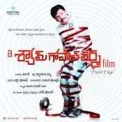 sgv-film-poster-1