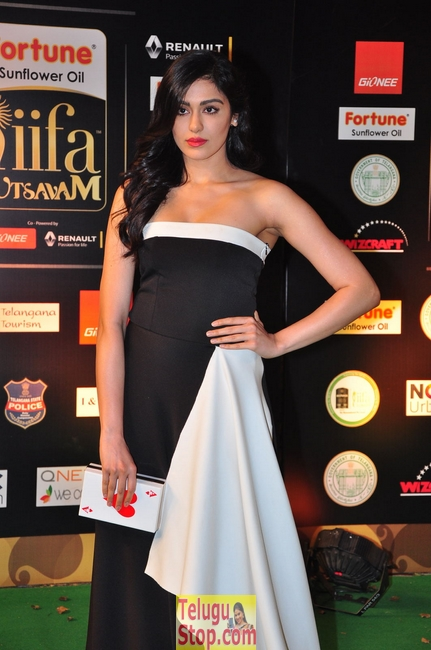 Adah sharma new stills 5- Photos,Spicy Hot Pics,Images,High Resolution WallPapers Download