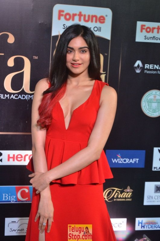 Adha sharma new pics- Photos,Spicy Hot Pics,Images,High Resolution WallPapers Download