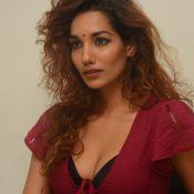 Aditi Tiwari New Photos- Pic 7 ?>