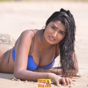 Ame Korika Movie Spicy Stills