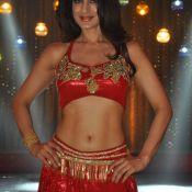 Ameesha Patel New Photos