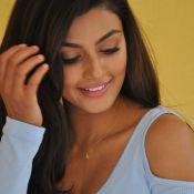 Anisha Ambrose New Stills