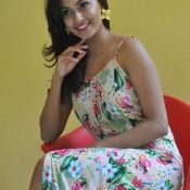 Anisha Ambrose New Stills