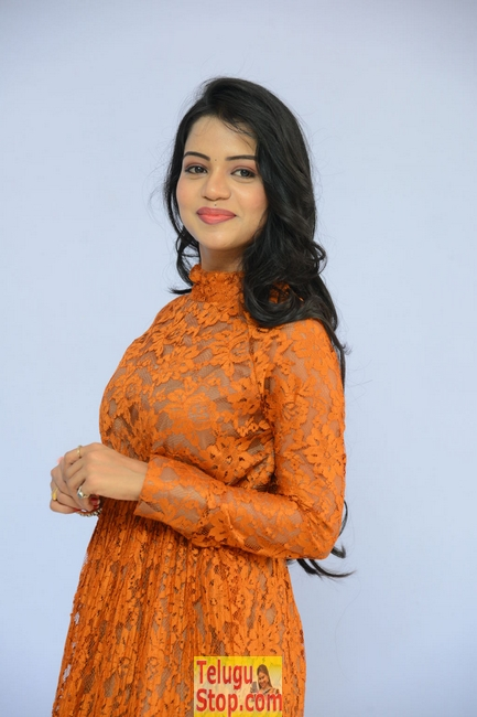 Bhavya sri latest stills- Photos,Spicy Hot Pics,Images,High Resolution WallPapers Download