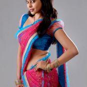 Bindu Madhavi Stills