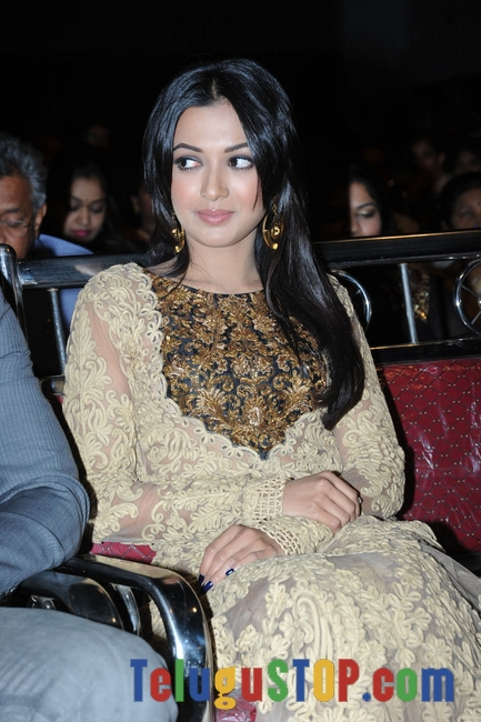 Catherine tresa pics- Photos,Spicy Hot Pics,Images,High Resolution WallPapers Download
