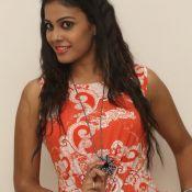Chandini New Stills Still 1 ?>