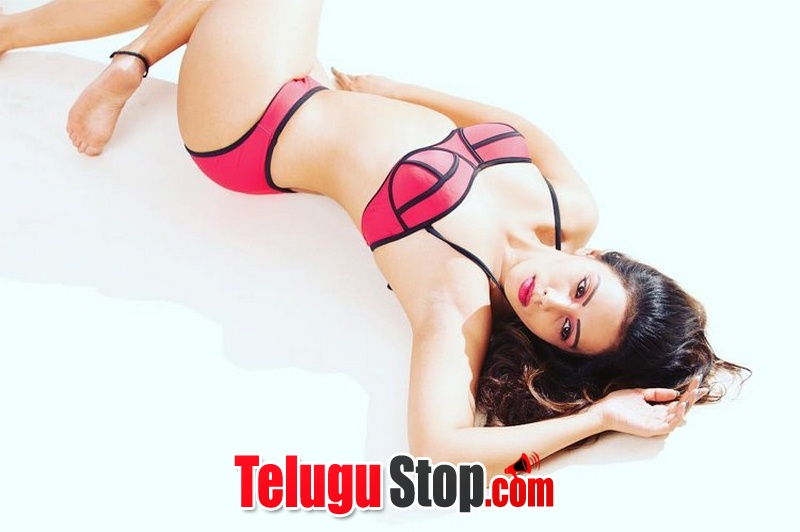 Dia shetty hot pics- Photos,Spicy Hot Pics,Images,High Resolution WallPapers Download
