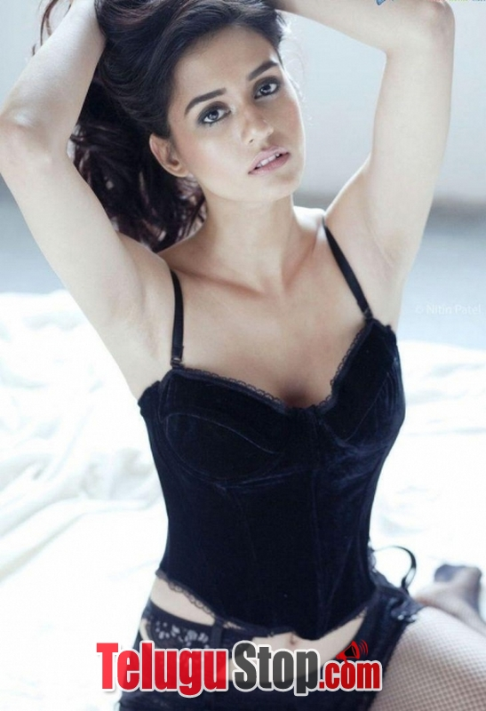 Disha patani spicy pics- Photos,Spicy Hot Pics,Images,High Resolution WallPapers Download