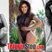 Disha Patani Spicy pics-Disha Patani Spicy Pics- Photo 5 ?>