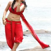Gajjela Gurram Movie Hot Images