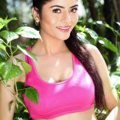 Gehana Vasisth New Hot Photos