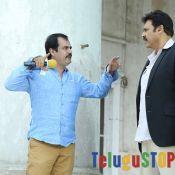 Gopala Gopala Movie Stills, Venkatesh, Shriya