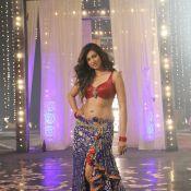Hamsa Nandini Hot Stills