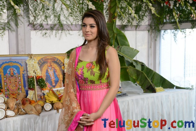 Hansika latest gallery- Photos,Spicy Hot Pics,Images,High Resolution WallPapers Download
