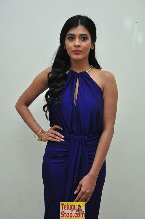 Hebah Patel Stills-Hebah Patel Stills-