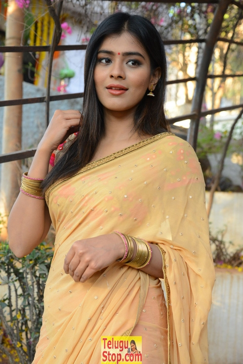 Heeba patel new pics- Photos,Spicy Hot Pics,Images,High Resolution WallPapers Download