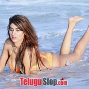 Heena Harwani Hot Photos- Photo 4 ?>