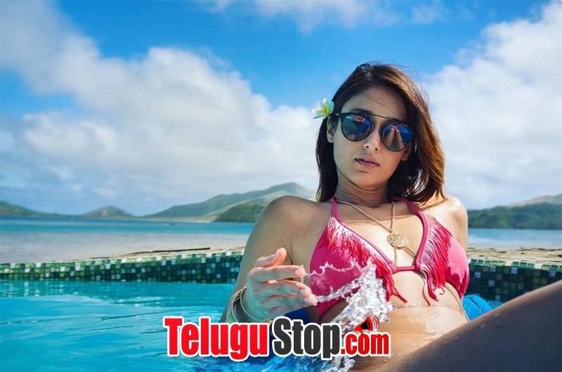 Ileana dcruz hot photos- Photos,Spicy Hot Pics,Images,High Resolution WallPapers Download