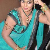 Jayavani Photo Gallery-Telugu Tamil Actress Aunty Hot Saree HD Pics Back shoot Download