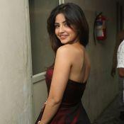 kashmira-latest-photo-gallary13