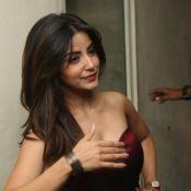 kashmira-latest-photo-gallary15