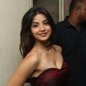 kashmira-latest-photo-gallary16