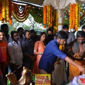 Kathi Lanti Kurrodu Movie Opening