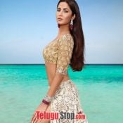 katrina-kaif-hot-gallery02