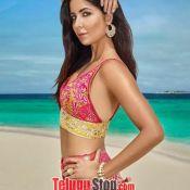 Katrina Kaif Hot Gallery Photo 5 ?>