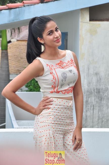 Lavanya tripati new stills- Photos,Spicy Hot Pics,Images,High Resolution WallPapers Download