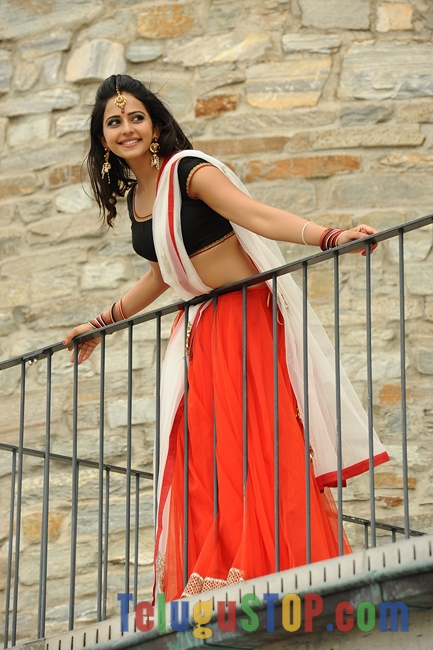 Loukyam movie stills- Photos,Spicy Hot Pics,Images,High Resolution WallPapers Download