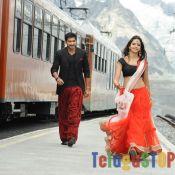 loukyam-movie-stills Pics,Spicy Hot Photos,Images