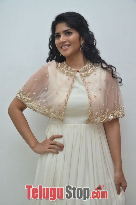 Megha akash new stills- Photos,Spicy Hot Pics,Images,High Resolution WallPapers Download