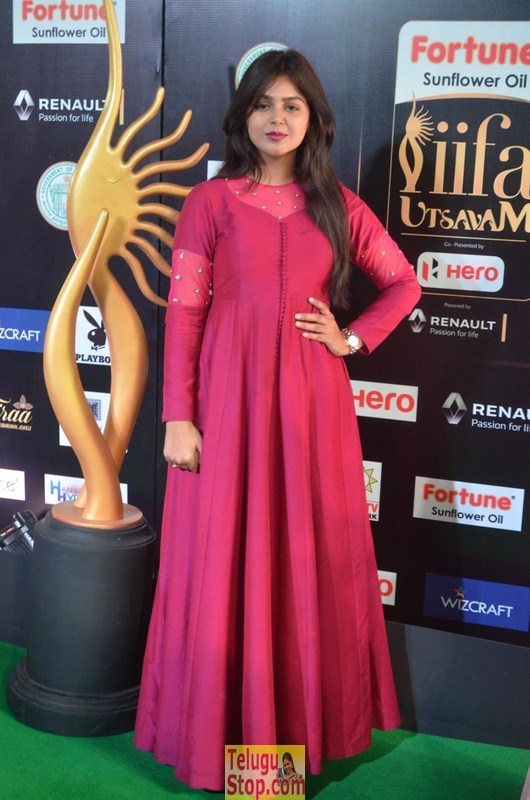 Monal Gajjar at IIFA Awards-Monal Gajjar At Iifa Awards--Telugu Actress Hot Photos Monal Gajjar At Iifa Awards-