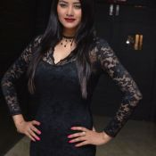 monika-singh-latest-pics08
