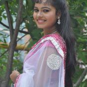 Naveena Jackson Hot in Saree