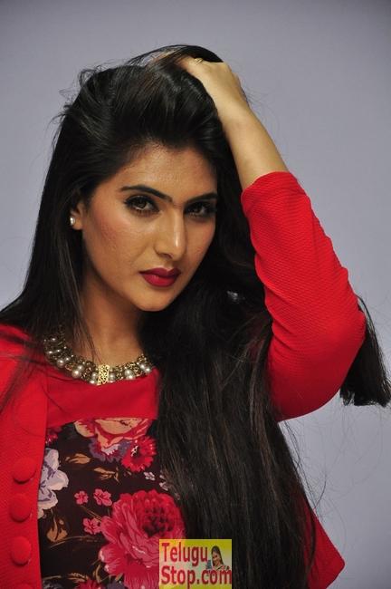 Neha Saxena Latest Stills-Neha Saxena Latest Stills-