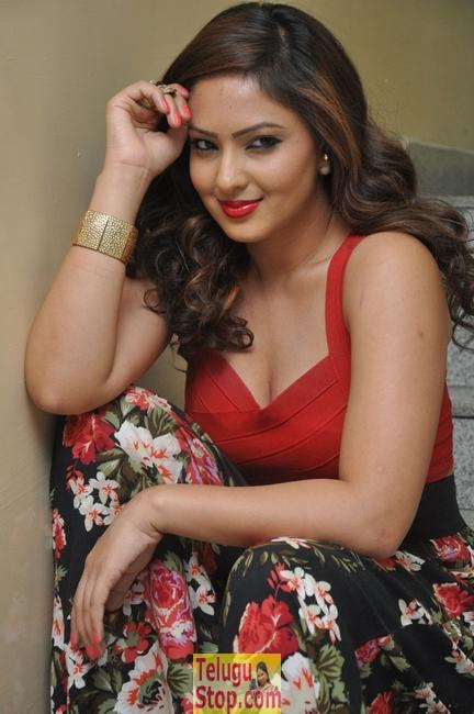 Nikesha Patel New Stills-Nikesha Patel New Stills--Telugu Actress Hot Photos Nikesha Patel New Stills-