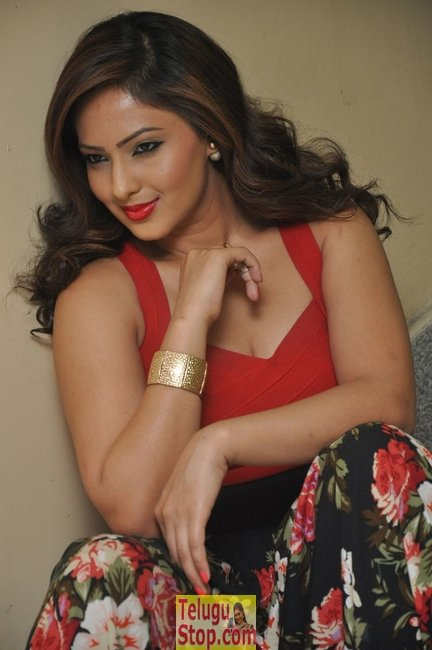 Nikesha patel new stills- Photos,Spicy Hot Pics,Images,High Resolution WallPapers Download