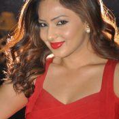 nikesha-patel-new-stills03
