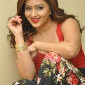 nikesha-patel-new-stills04