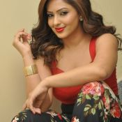 nikesha-patel-new-stills06
