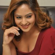 nikesha-patel-new-stills07