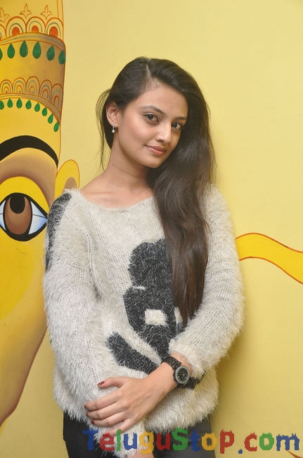 Nikitha narayan image- Photos,Spicy Hot Pics,Images,High Resolution WallPapers Download