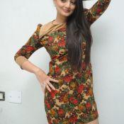 Nikitha Narayan Latest Pics- Still 2 ?>