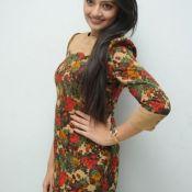 Nikitha Narayan Latest Pics- Photo 4 ?>