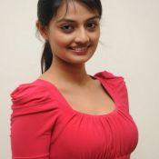Nikitha Naryana Latest Stills-Nikitha Naryana Latest Stills- HD 9 ?>