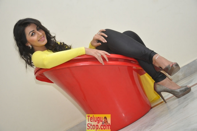 Nikki galrani stills 2- Photos,Spicy Hot Pics,Images,High Resolution WallPapers Download